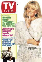 tv guide magazine the cover archive 1953 today 1990 november 24 1990. Black Bedroom Furniture Sets. Home Design Ideas